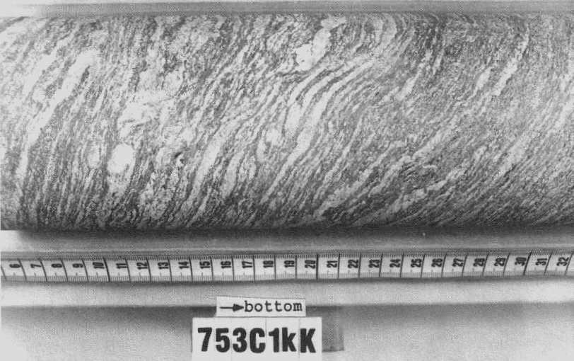 Biotite Gneiss